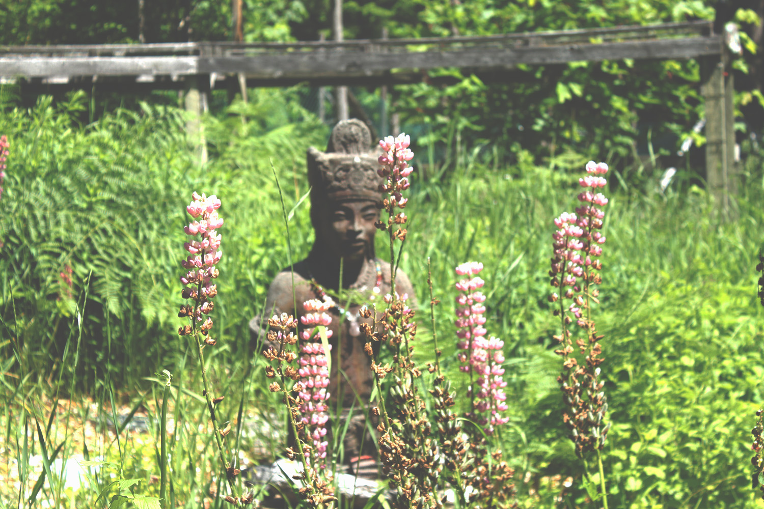 Statue sitting in herb garden