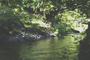 View of Eaglenest Sanctuary River